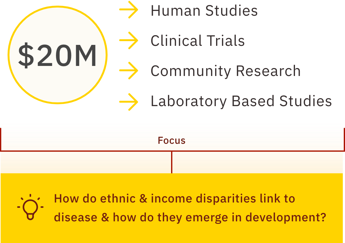 Infographic that shows $20 million grant going toward human studies, clinical trials, community research and Lab based studies. The focus is on the question highlighted in yellow of how do ethnic & income disparities link to disease and how do they emerge in development