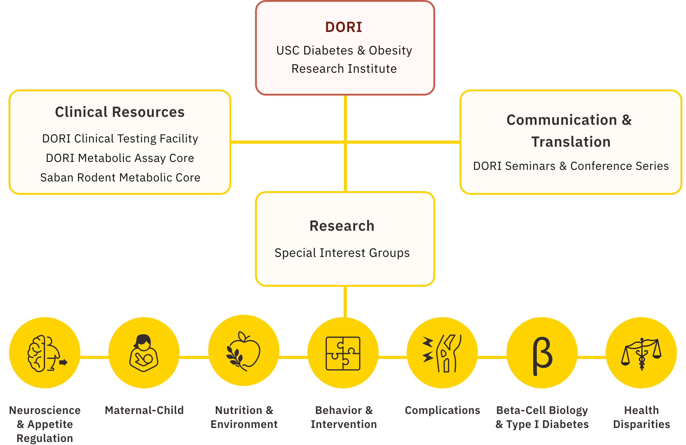 Overview of DORI structure showing Communication, Research, and Clinical Resources as the facets